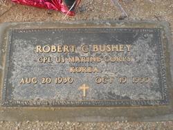 Robert C Bushey
