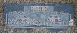Albert Heber Curtis