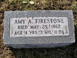 Amy A Firestone