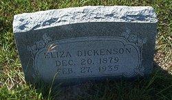 Eliza J. Macy <i>Condor</i> Dickenson