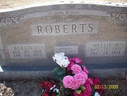 Nellie Mae <i>Akins</i> Roberts