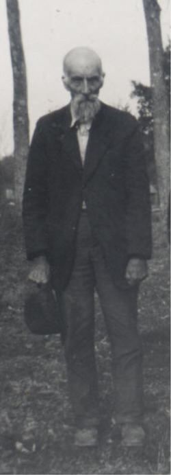John Whitson Sheep John Moore