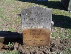Claudia Harvey Holland