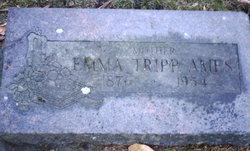 Emeline Elvira <i>Tripp</i> Ames