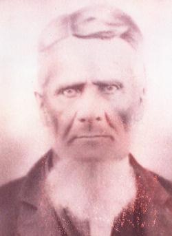 William M Seay