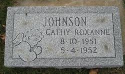 Cathy Roxanne Johnson