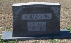 Agnes S Anderson