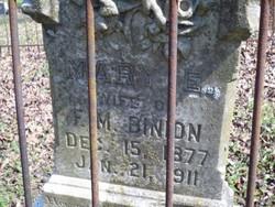 Mary E. Binion
