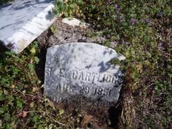 R. E. Cartlidge