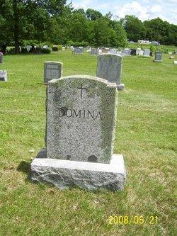 Arthur Domina
