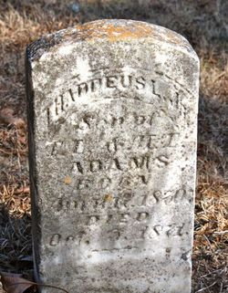 Thaddeus L. Adams, Jr