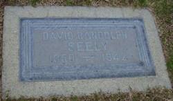 David Randolph Seely, Sr