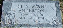 Billy Wayne Anderson
