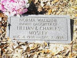 Norma Waudine Mosley