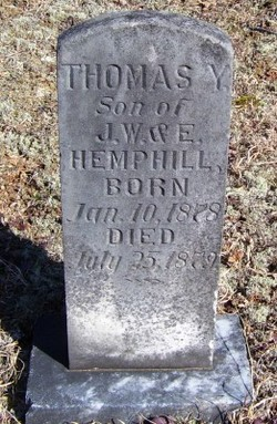 Thomas Young Hemphill