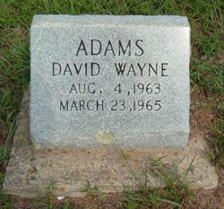 David Wayne Adams