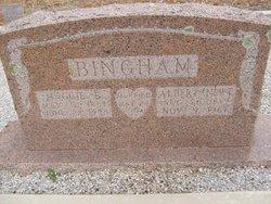 Albert Newton Bingham