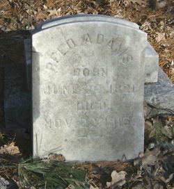 Reed Adams