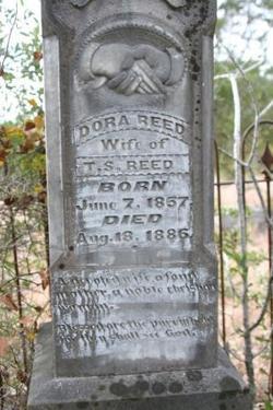 Medora Dora <i>Connell</i> Reed