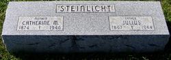 Julius Steinlicht