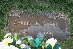 Carrie Anne <i>Morgan</i> Clark