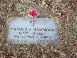 Harold A Hammond