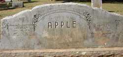 Grandison Apple