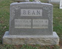 Francelia Belle <i>Piles</i> Bean