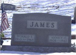 Annice G <i>Fluhart</i> James