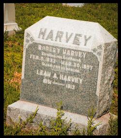 Leah A Harvey