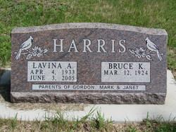 Lavina Arleen <i>Hove</i> Harris