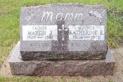 Martin J Mann