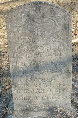 Francis E Morris