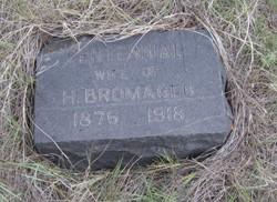 Centennial Bromagen