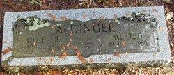 Alfred Aldinger