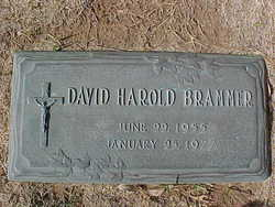 David Harold Brammer