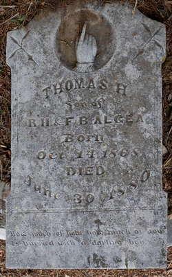 Thomas H. Algea
