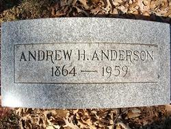 Andrew H Anderson