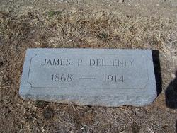 James P Delleney