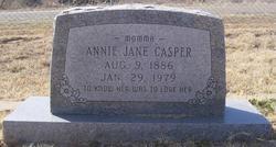 Annie Jane <i>Mansell</i> Casper