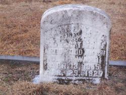 Mary Elizabeth Liza <i>Arrowood</i> Ward