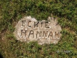 Alexander Eckie Hannah