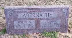 Boley N. Abernathy