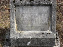 James William Bill Brewster