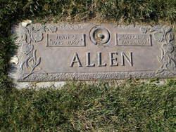 Carol J Allen