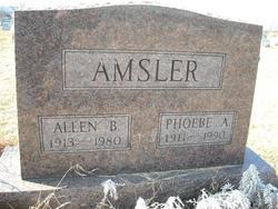 Allen B. Amsler