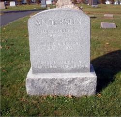 Amos N. Anderson