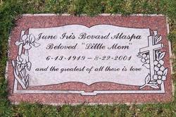 June Iris <i>Kramer</i> Alaspa