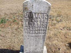 Julia Frances <i>Lathram</i> Adams