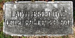 Ladye Virginia Breedlove